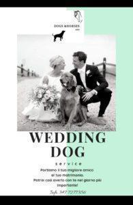 Wedding Dog Avezzano Abruzzo